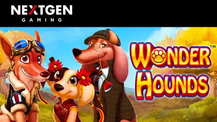 Wonder Hounds Titelbild